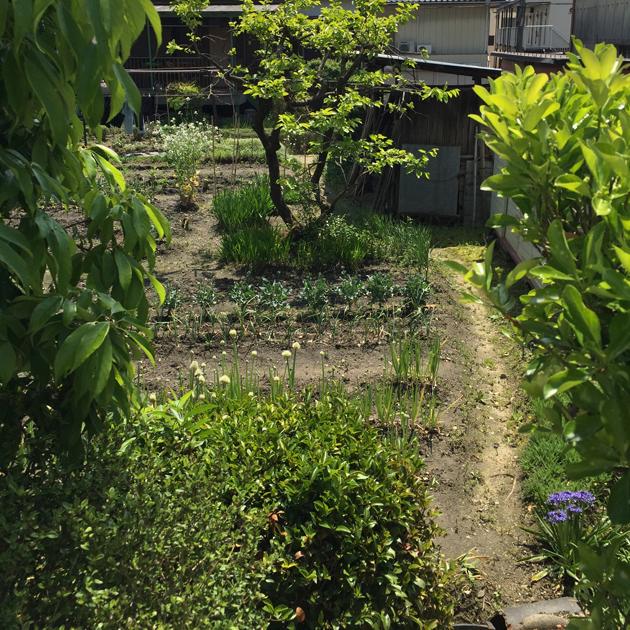 愛知県 豊田市の家 吉田夏雄建築設計事務所